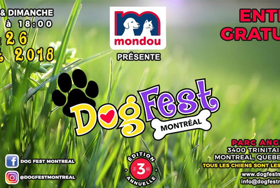 August Event Dog Fest Montreal