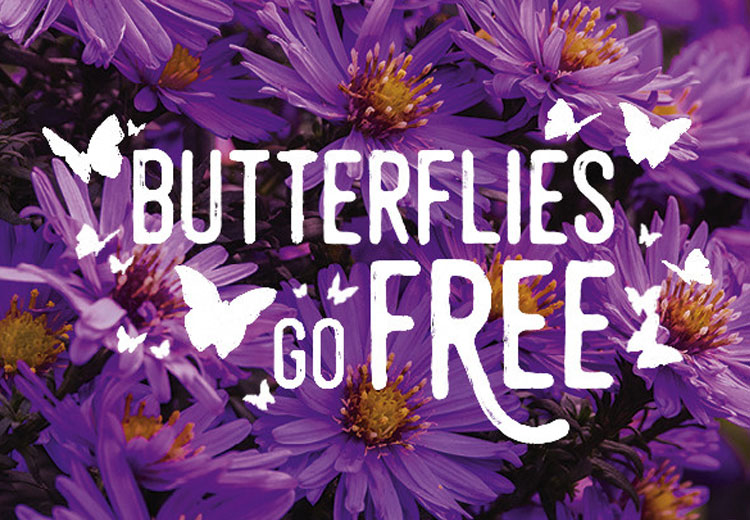 March Event Butterflies Go Free